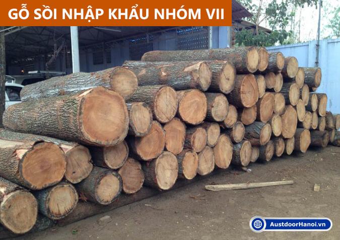 gỗ sồi trắng đỏ là gỗ gì thuộc nhóm mấy